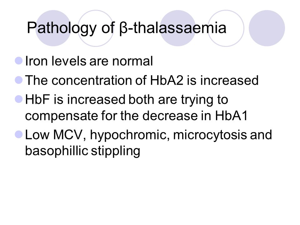 Pathology of β-thalassaemia