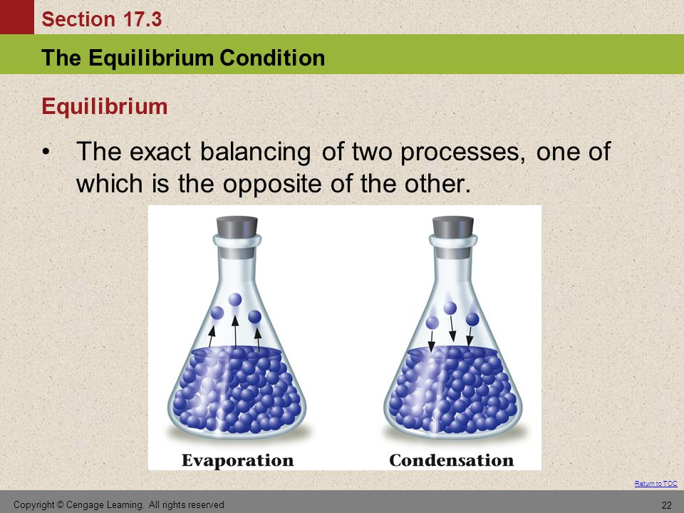 Equilibrium The exact balancing of two processes, one of which is the opposite of the other.