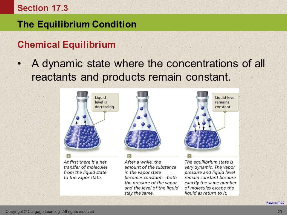 Chemical Equilibrium A dynamic state where the concentrations of all reactants and products remain constant.