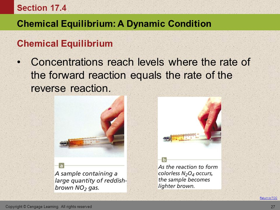 Chemical Equilibrium Concentrations reach levels where the rate of the forward reaction equals the rate of the reverse reaction.
