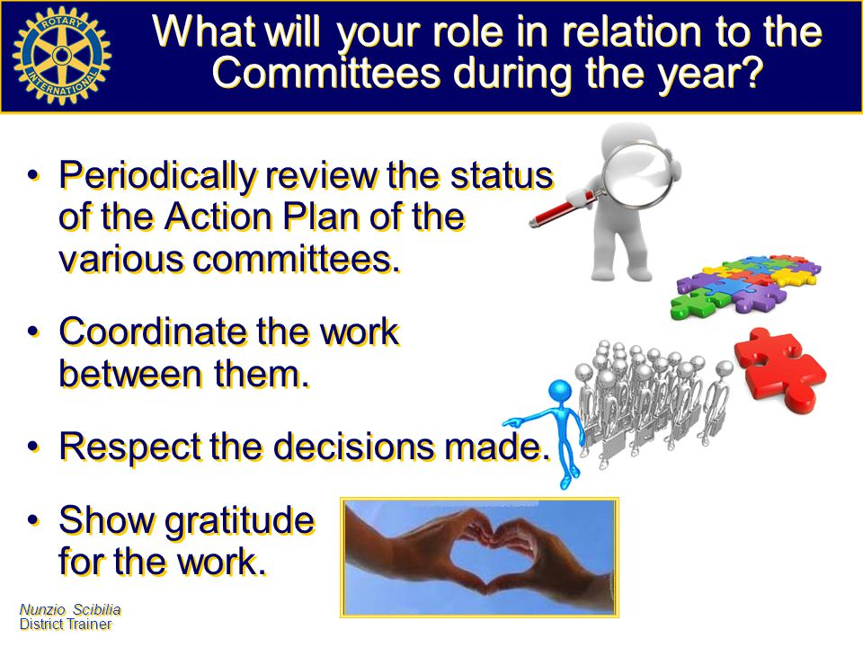 What will your role in relation to the Committees during the year
