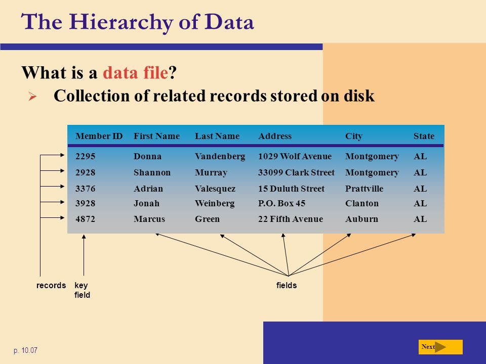 The Hierarchy of Data What is a data file