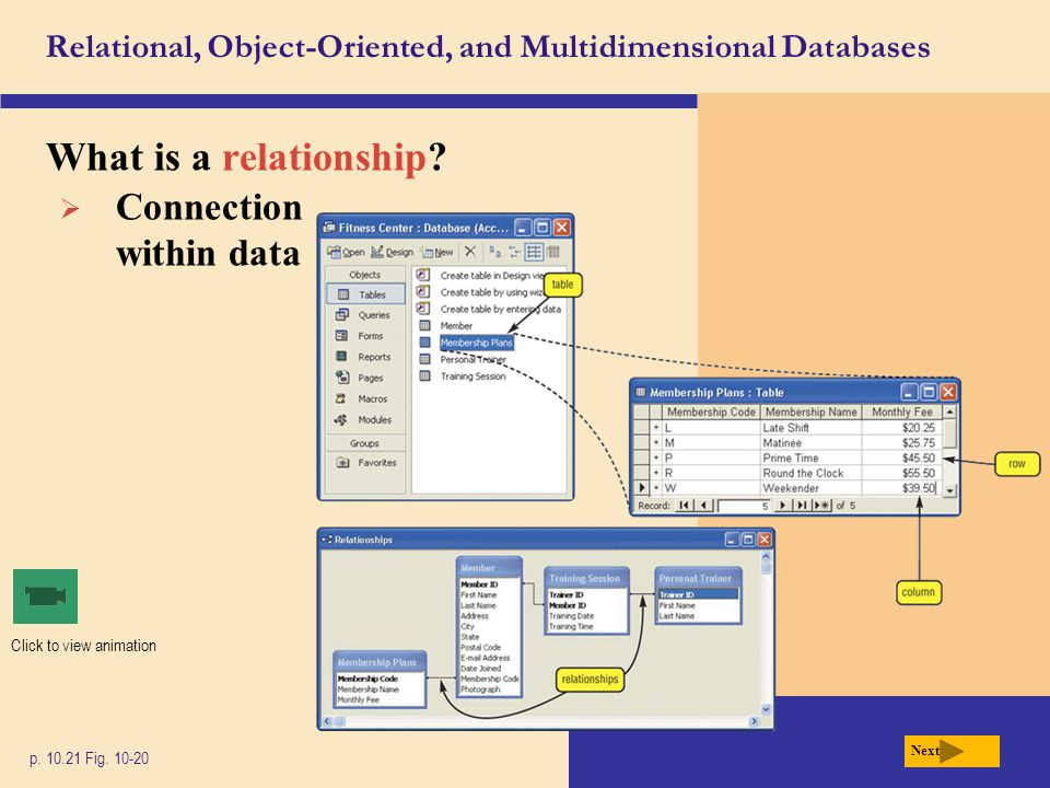 Relational, Object-Oriented, and Multidimensional Databases