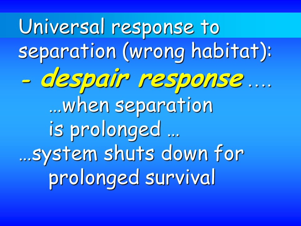 Universal response to separation (wrong habitat): - despair response …. …when separation. is prolonged …