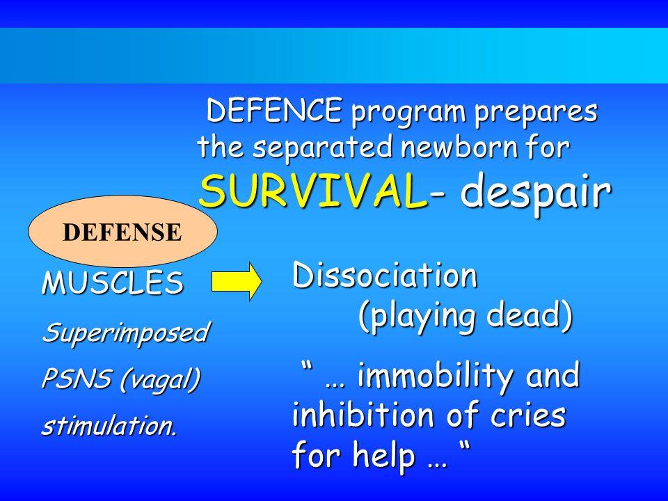 Dissociation (playing dead)