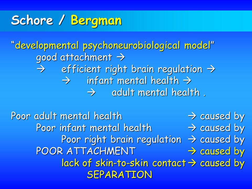 Schore / Bergman developmental psychoneurobiological model