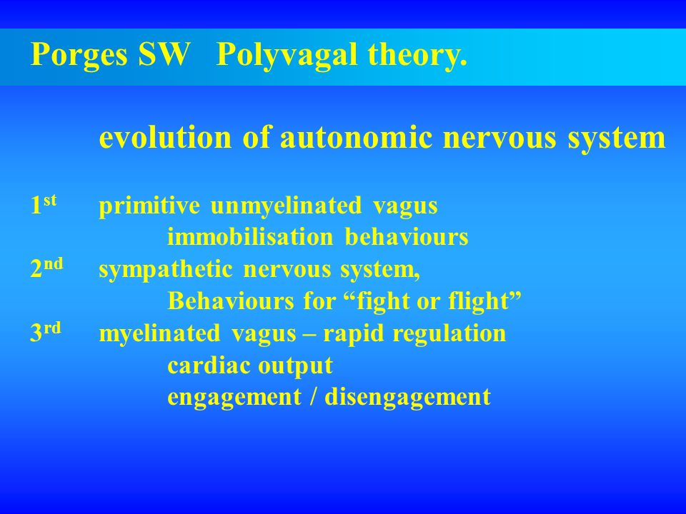 Porges SW Polyvagal theory. evolution of autonomic nervous system