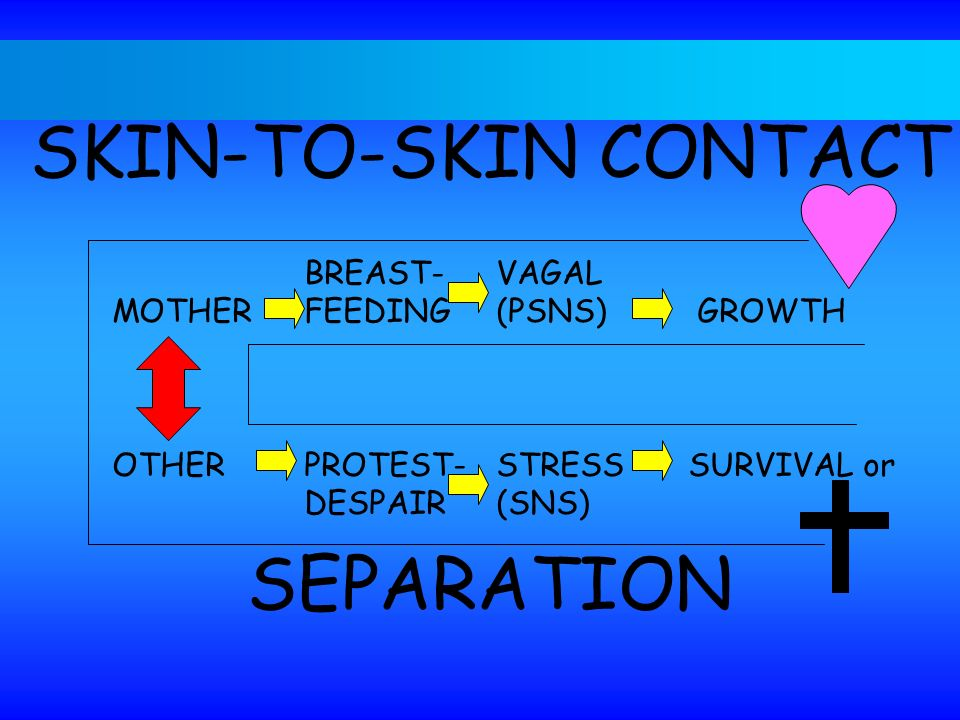SKIN-TO-SKIN CONTACT SEPARATION BREAST- VAGAL