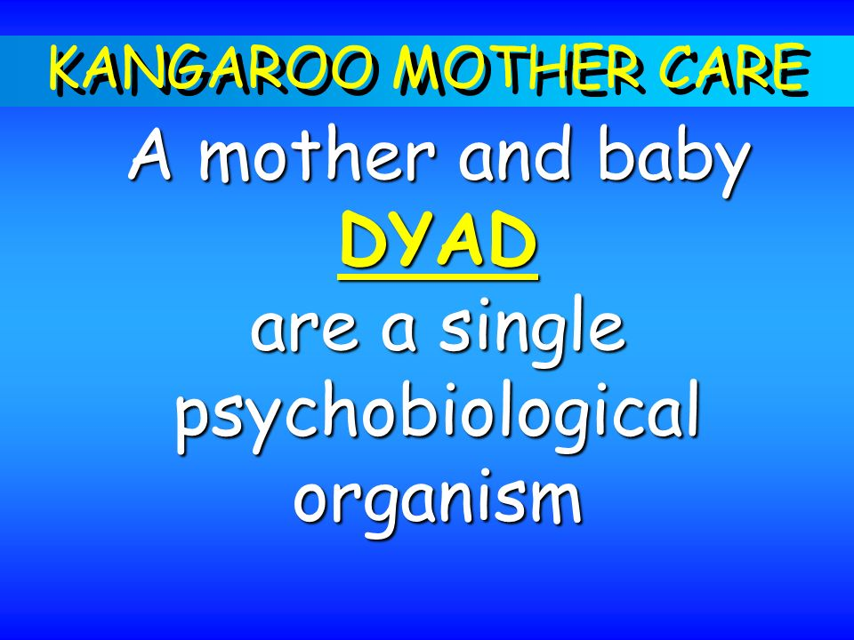 A mother and baby DYAD are a single psychobiological organism