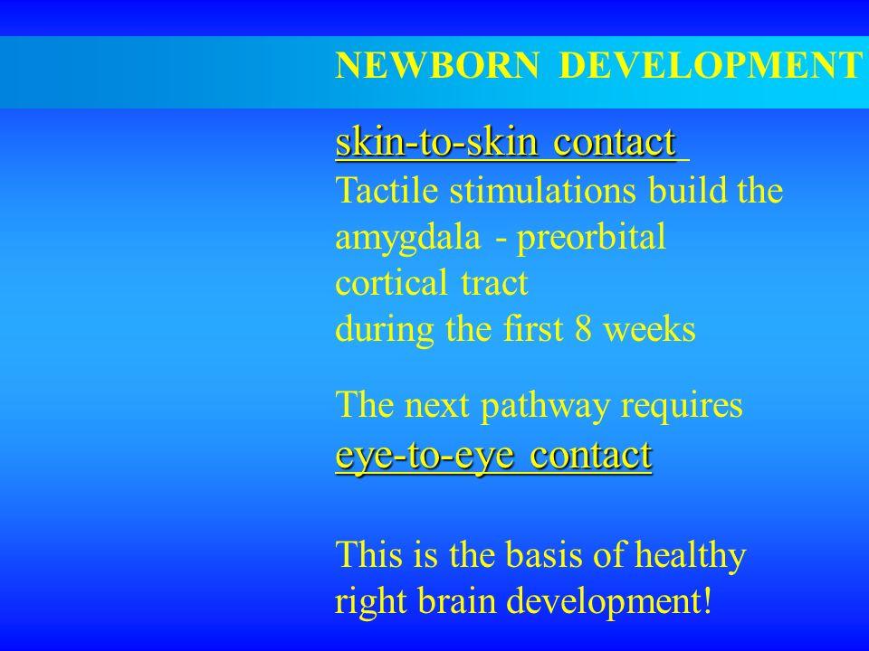 skin-to-skin contact eye-to-eye contact NEWBORN DEVELOPMENT