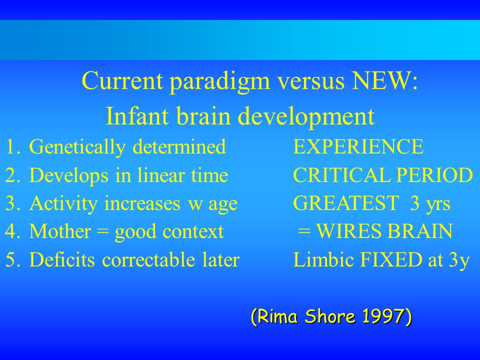 Current paradigm versus NEW: Infant brain development