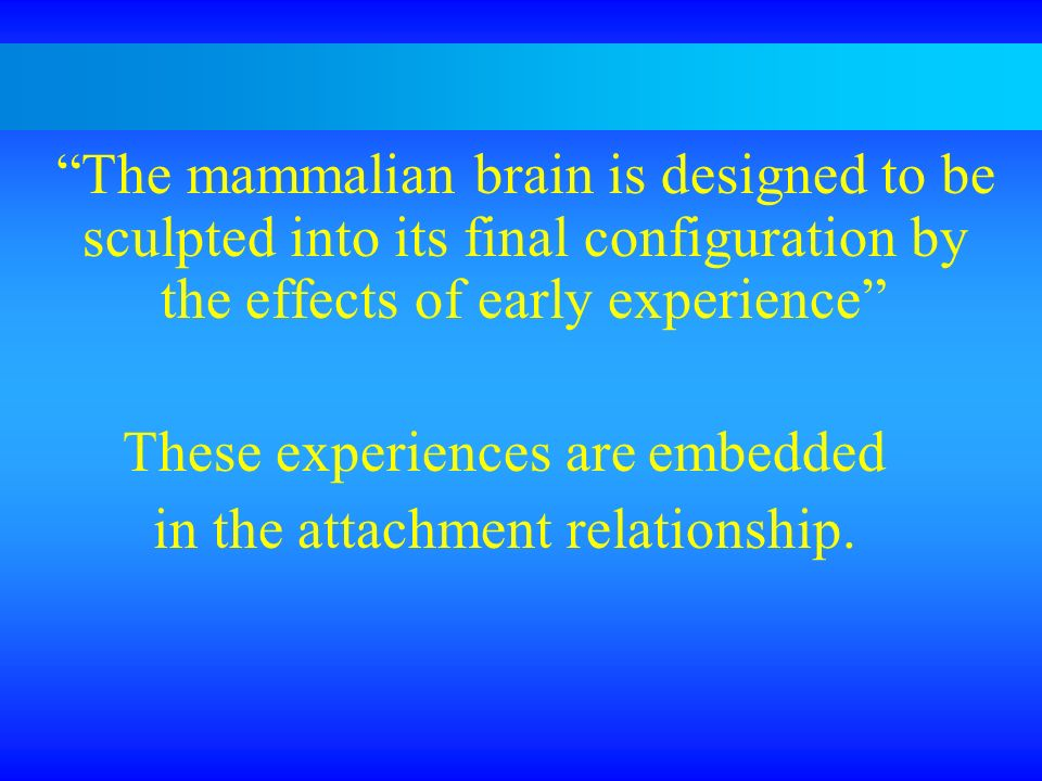 These experiences are embedded in the attachment relationship.
