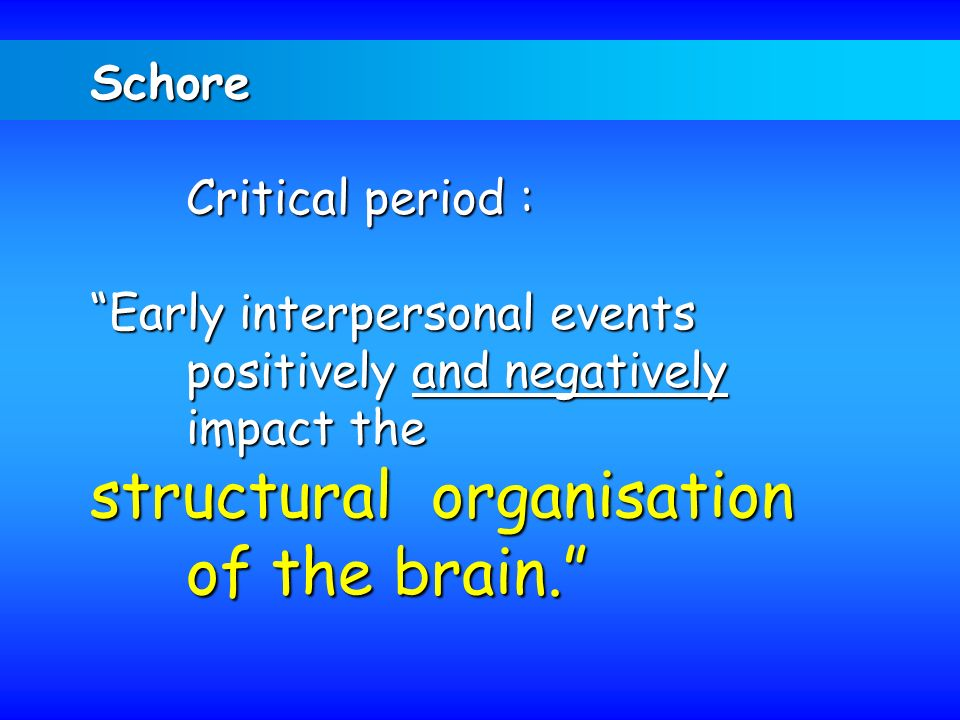 structural organisation of the brain.