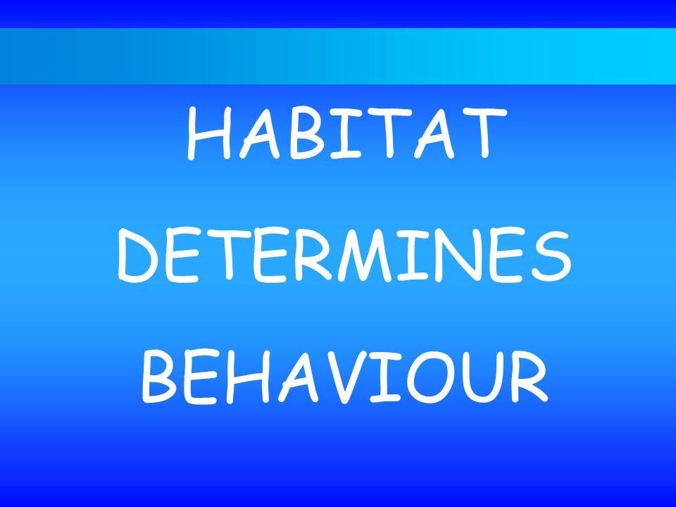 The habitat - niche concept
