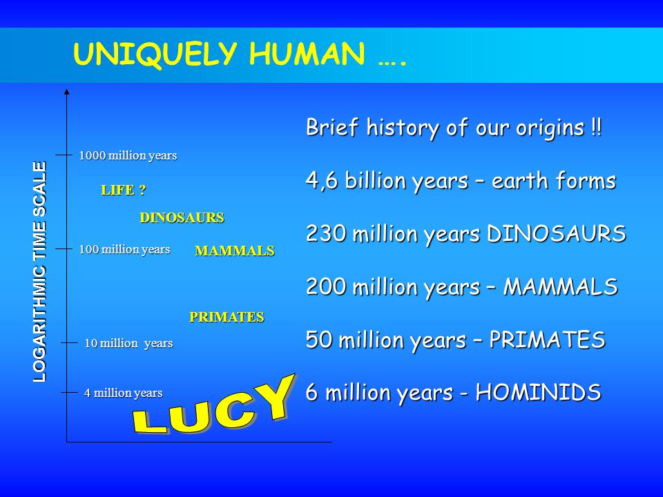 LUCY UNIQUELY HUMAN …. Brief history of our origins !!