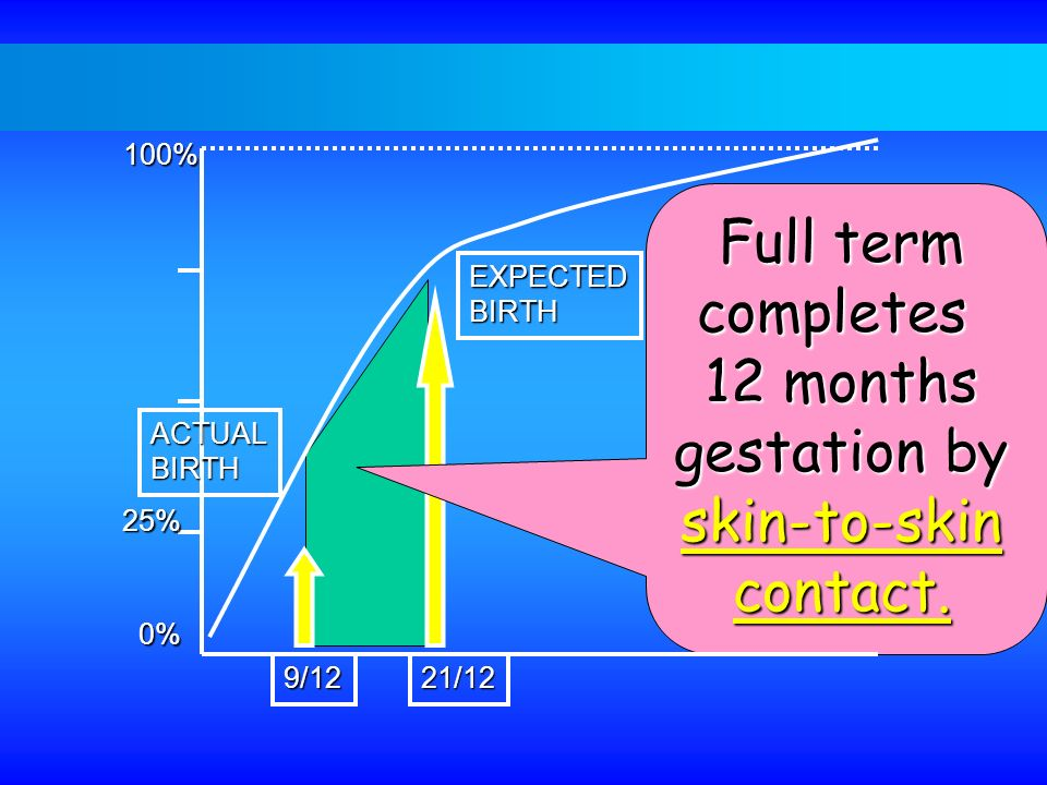 Full term completes 12 months gestation by skin-to-skin contact. 100%
