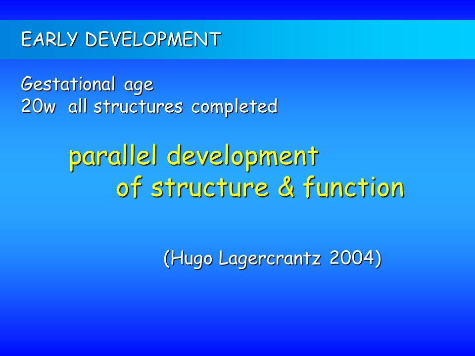 of structure & function