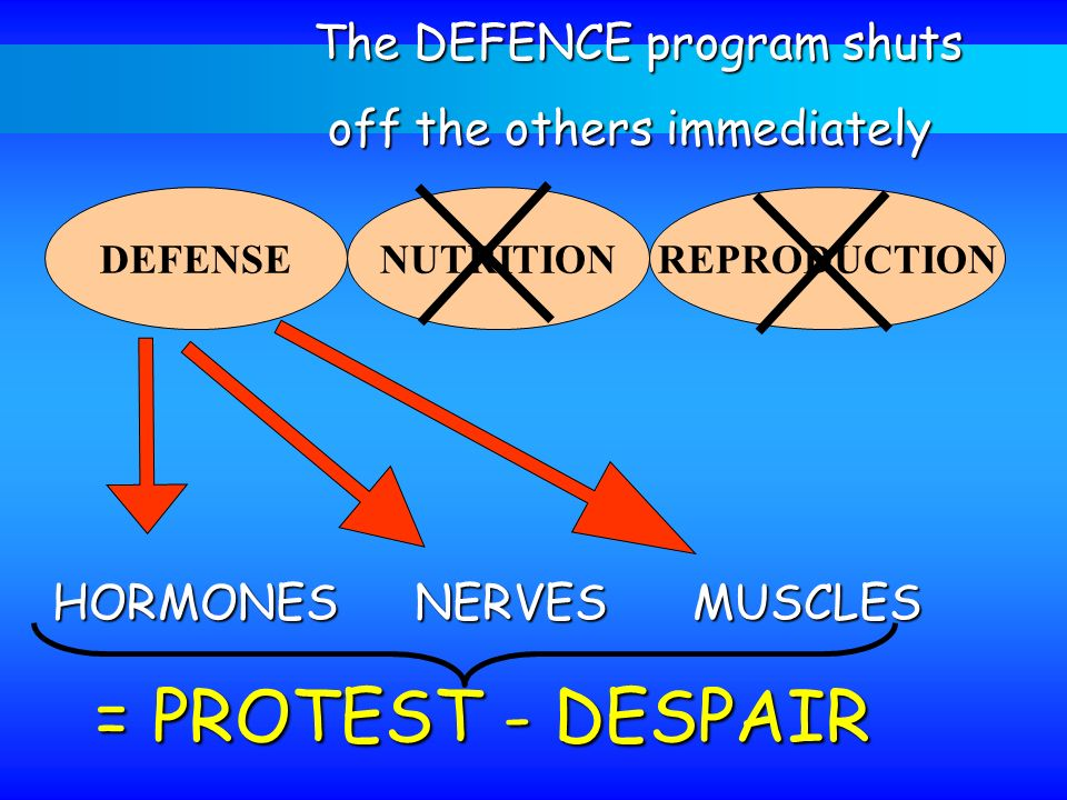 = PROTEST - DESPAIR The DEFENCE program shuts