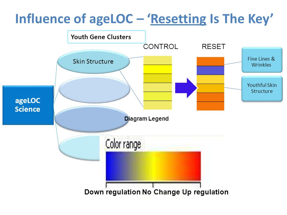 Influence of ageLOC – 'Resetting Is The Key'