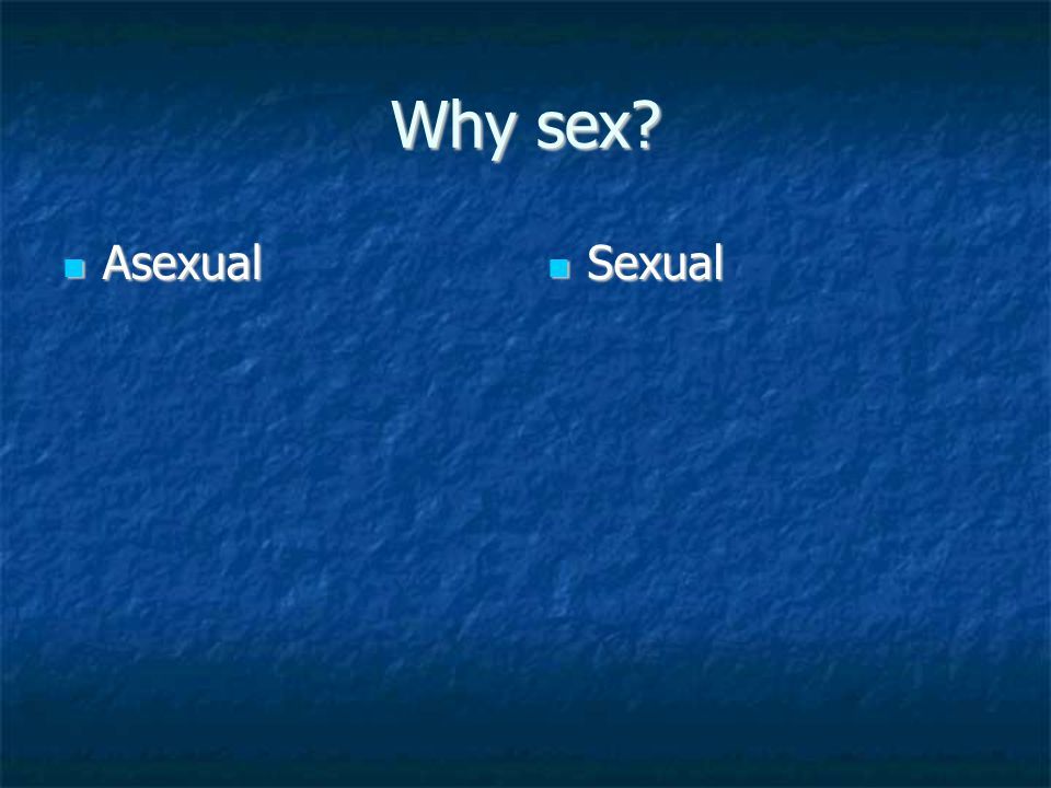 Why sex Asexual Sexual