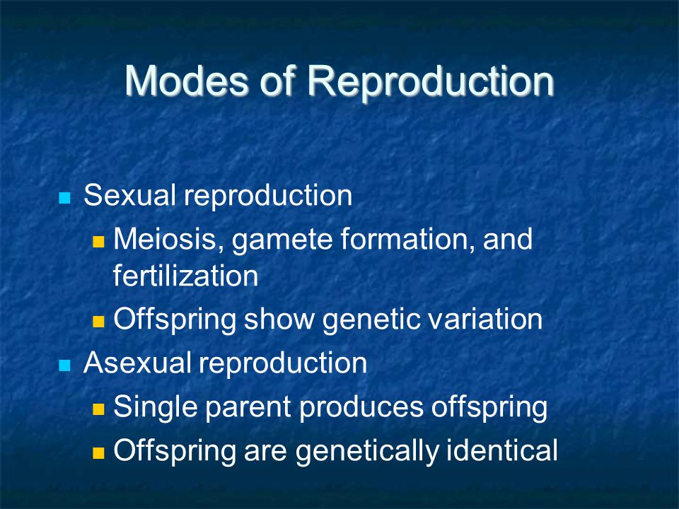 Modes of Reproduction Sexual reproduction