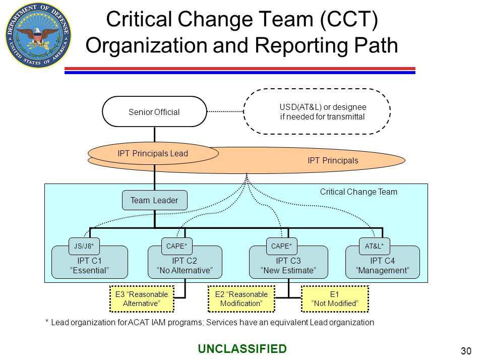 Critical Change Team (CCT) Organization and Reporting Path