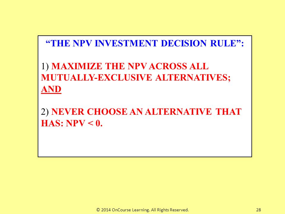 THE NPV INVESTMENT DECISION RULE :