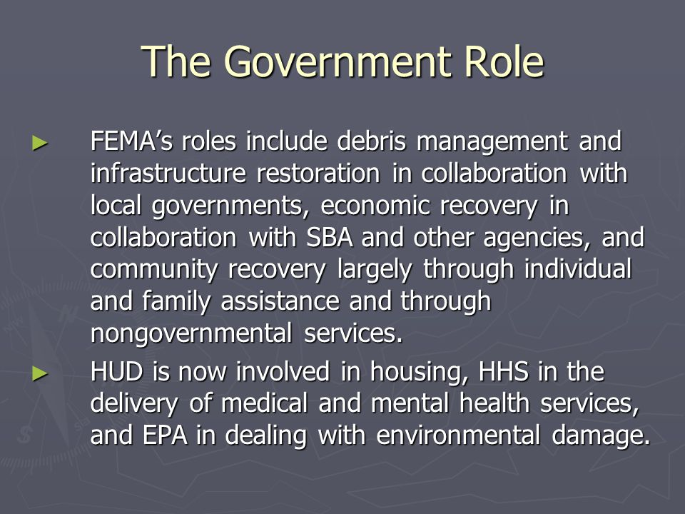 The Government Role
