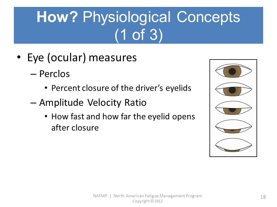 How Physiological Concepts (1 of 3)