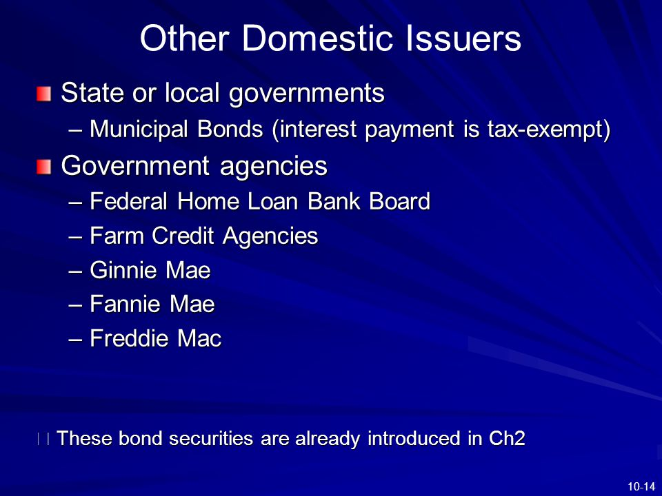 Other Domestic Issuers