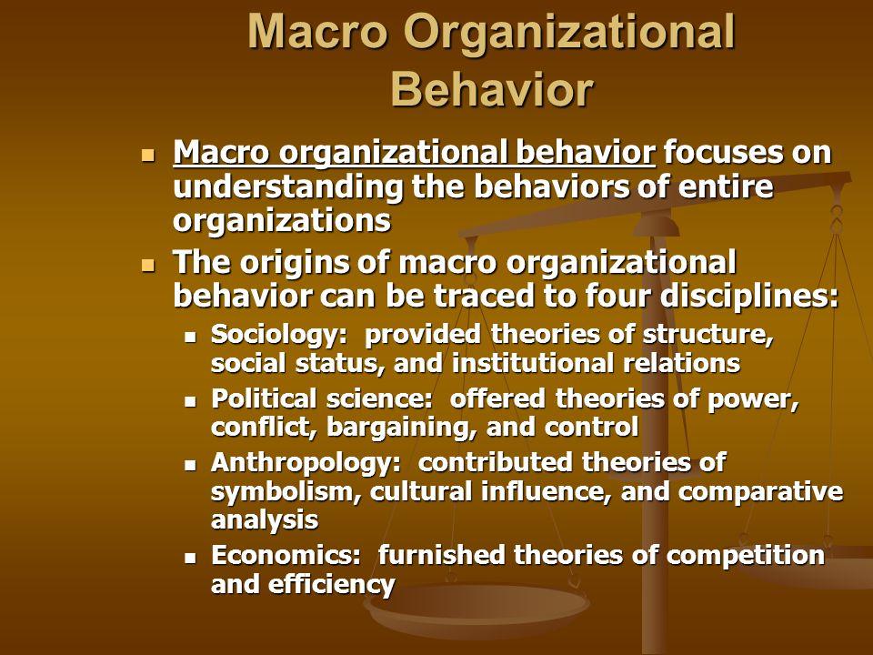 Macro Organizational Behavior