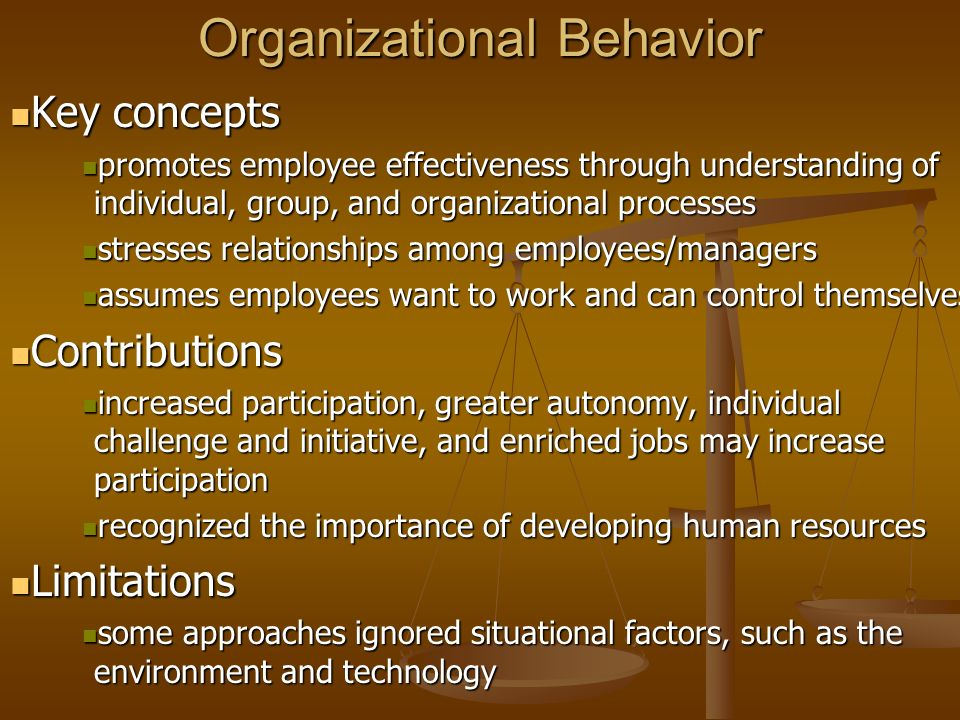 individual organization behavior Faculty in the organizational behavior area mba courses in organizational behavior help students to understand behavior at both the individual and organization.