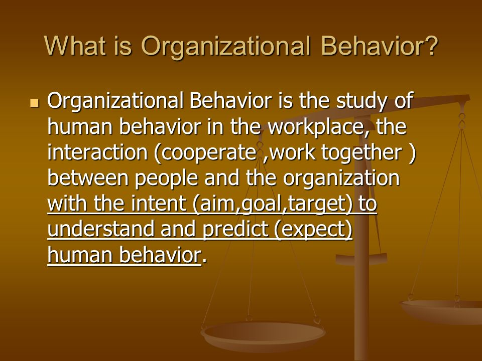 human behavior in organizations creativity in workplace Organizational behavior and are concerned with human behavior and a manager who is skilled in organizational behavior will be able to work effectively with.