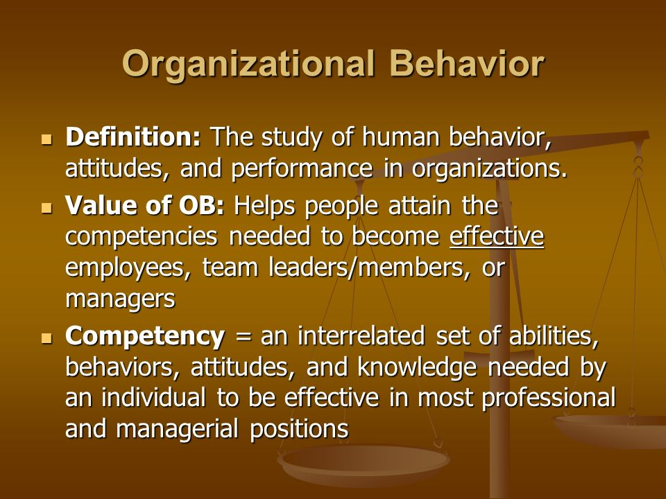 human behavior in organization meaning