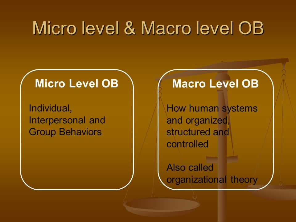 Micro level & Macro level OB