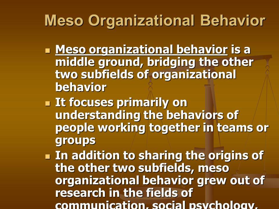 Meso Organizational Behavior