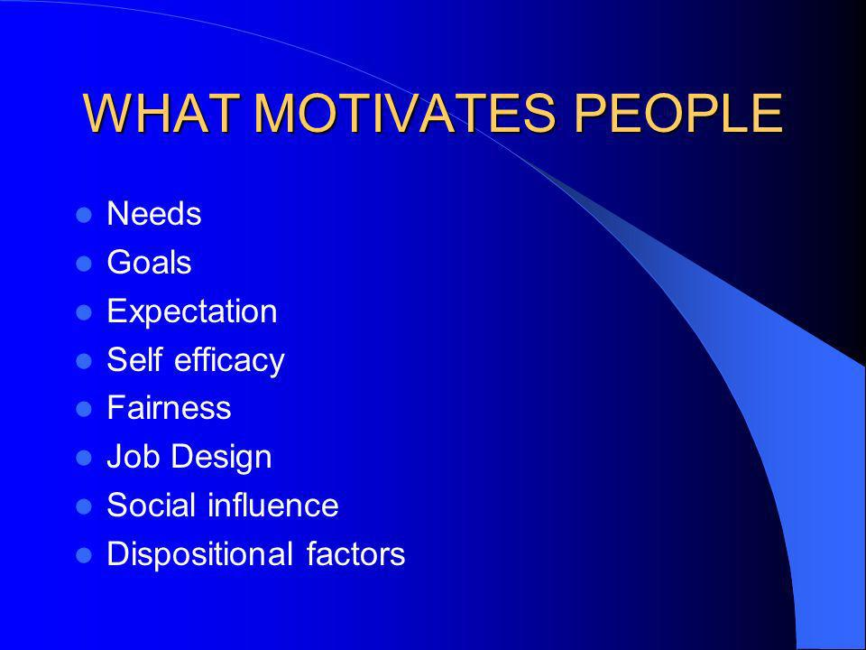WHAT MOTIVATES PEOPLE Needs Goals Expectation Self efficacy Fairness