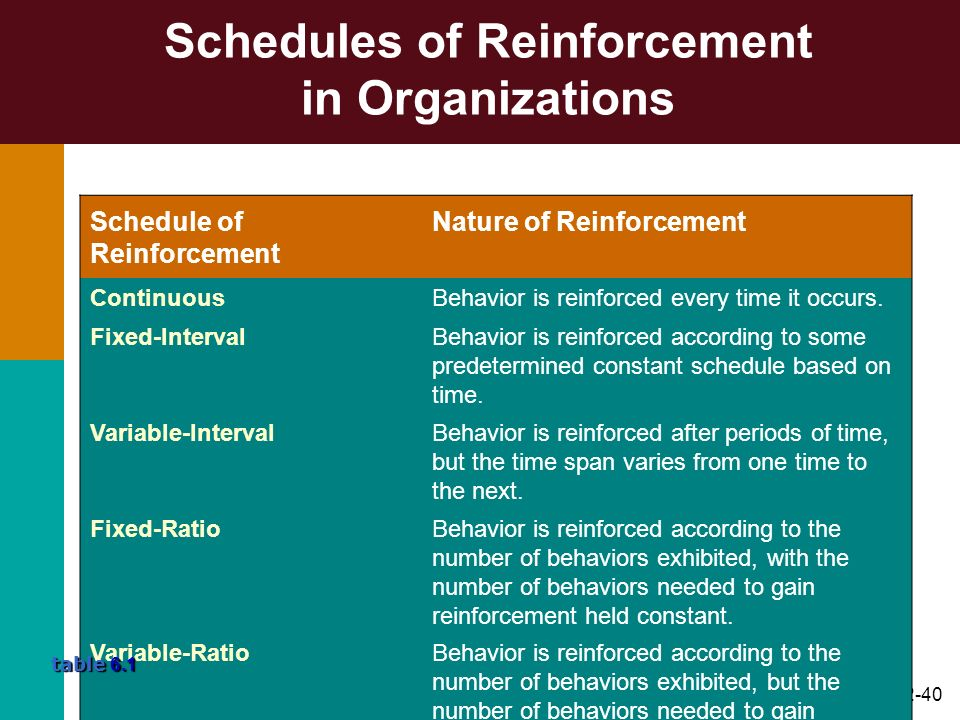 Schedules of Reinforcement in Organizations