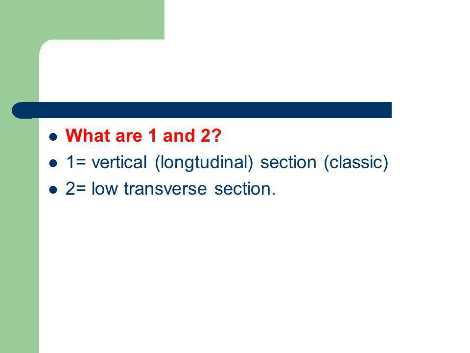 What are 1 and 2 1= vertical (longtudinal) section (classic) 2= low transverse section.
