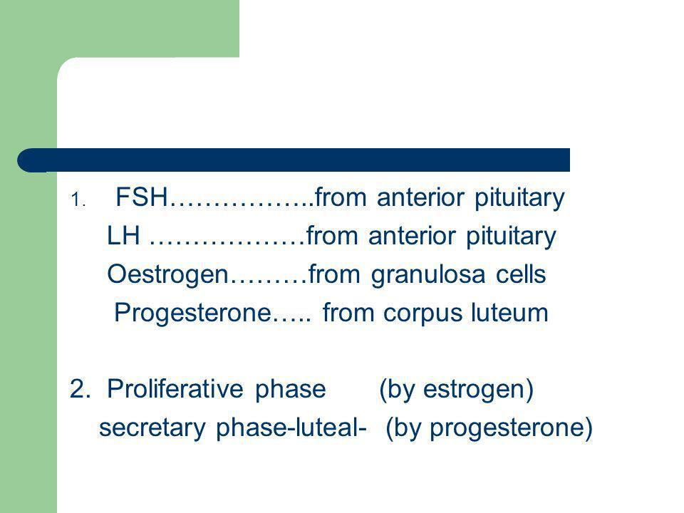 FSH……………..from anterior pituitary