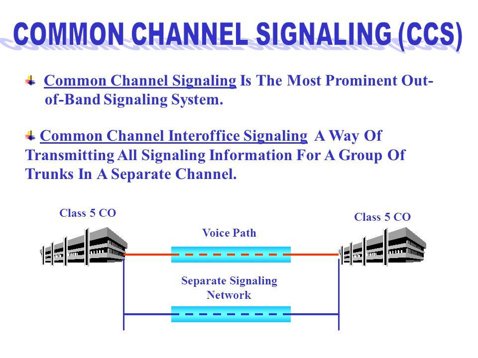 Separate Signaling Network