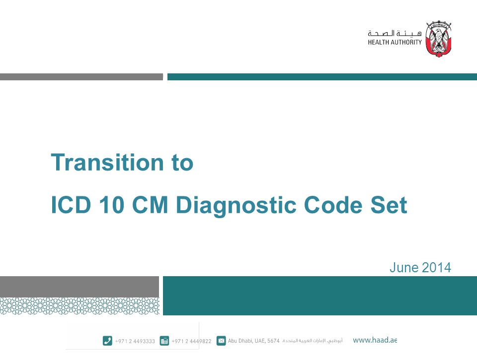 Transition to ICD 10 CM Diagnostic Code Set