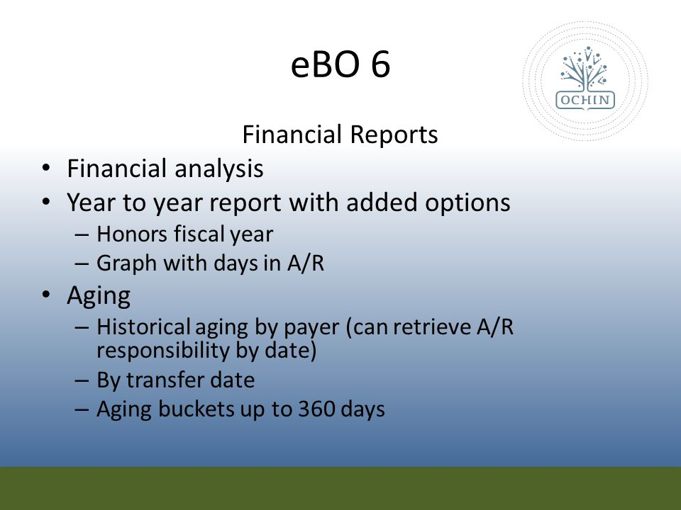 eBO 6 Financial Reports Financial analysis