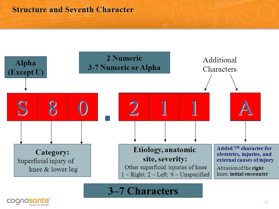 Structure and Seventh Character