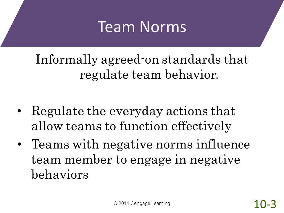 Informally agreed-on standards that regulate team behavior.