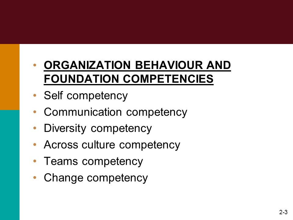 ORGANIZATION BEHAVIOUR AND FOUNDATION COMPETENCIES