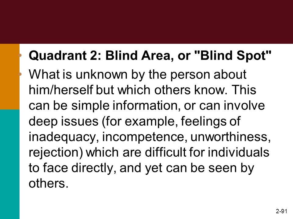 Quadrant 2: Blind Area, or Blind Spot