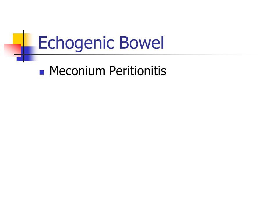 Echogenic Bowel Meconium Peritionitis