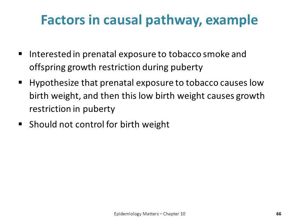 Factors in causal pathway, example