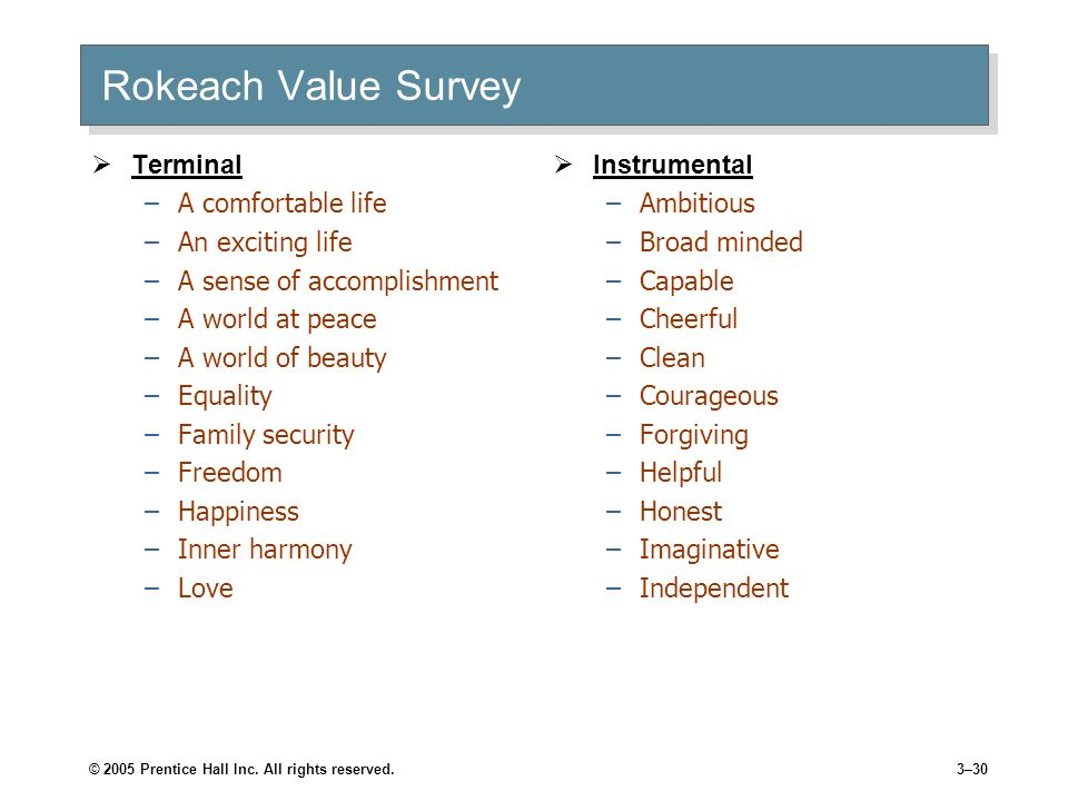 rokeach value survey Ers' values within the context of a value orientation modifications to the rokeach  value survey are used to enhance the analysis and application of the study of.